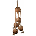 SB1123 Coco Swing and Forage Bird Toy