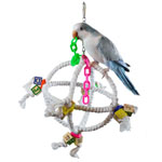 XL Bungee Bird Toy
