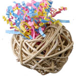 SB520 Fiesta Ball Stuffers Bird Toy